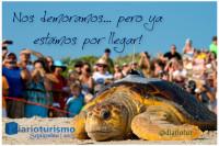 Nuevo Sitio Web DiarioTurismo en ...